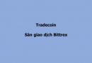 Cryptocurrency 4: Tradecoin cơ bản trên sàn giao dịch Bittrex
